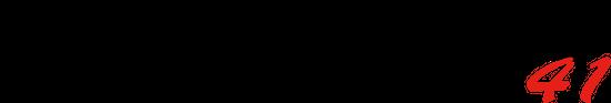 iaeste_fm_41_logo